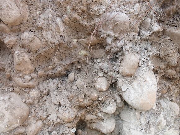 Soil in Puente Alto vineyard in Maipo, Chile, Don Melchor