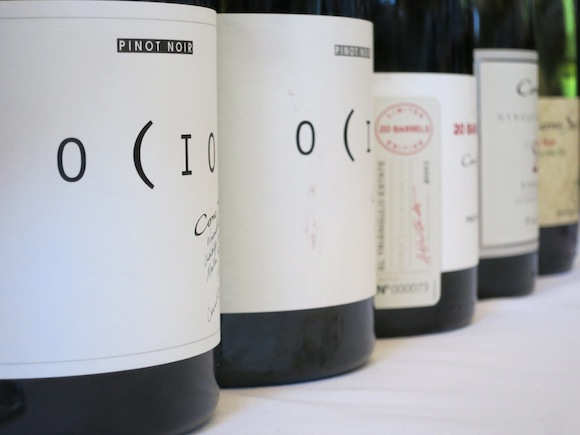 Labels of Cono Sur's Ocio and 20 Barrels Pinot Noirs