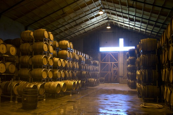 The barrel room at Seresin winery in Marlborough, New Zealand