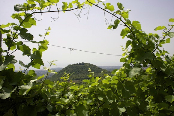 View from Nicosia's Monte Gorna vineyard in Etna in Sicily