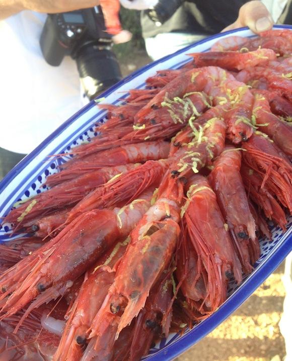 "Plate of Sicilian pink prawns served in Nino Barraco""s Vignammare vineyard"