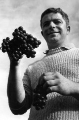 Villa Maria winery founder Sir George Fistonich